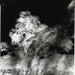 « Captures de vent » Nouvelle Calédonie. 2002. Sténopé. Papier baryté 4 x 5 inches