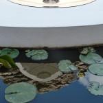 2011.  Baca. Yucatan. Miroir acier inox poli et nymphéas